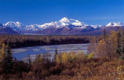 Denali National Park Panorama